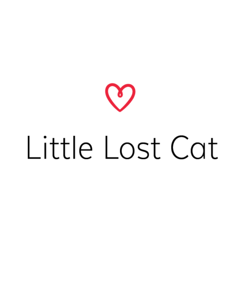 Little Lost Cat